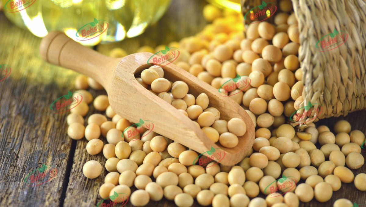 صادرات سویا از ایران