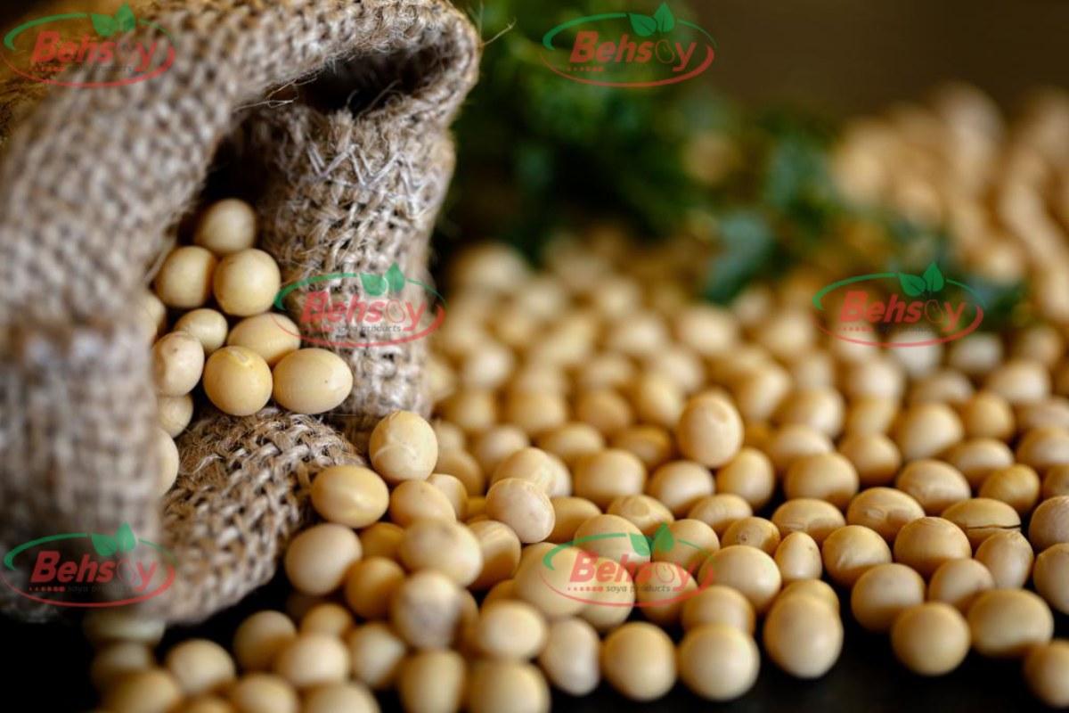 صادرات سویا از ایران به عراق